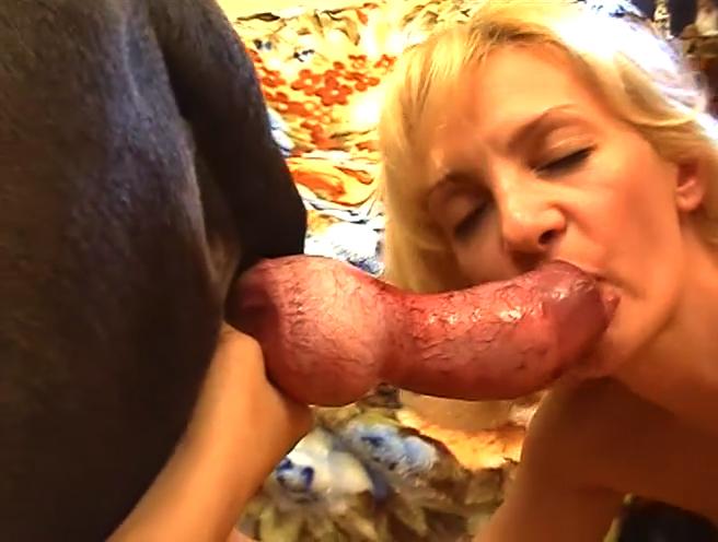 Video porno de sperme de prêtres